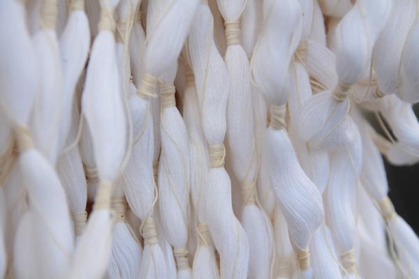 久留米絣(かすり)たて糸